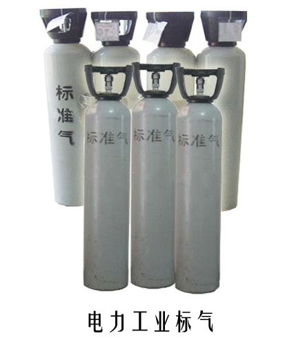 电力标准气体